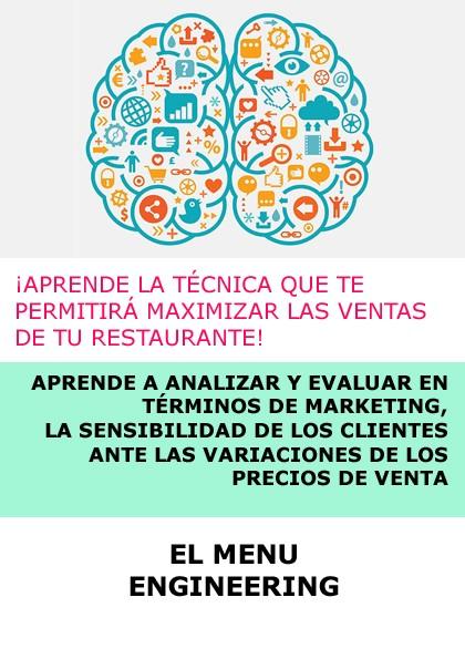 CURSO INGENIERIA DE MENÚS - ONLINE (INCLUYE PLANTILLA EXCEL)
